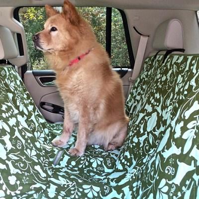 Molly Mutt Stylish Dog Car Seat Covers