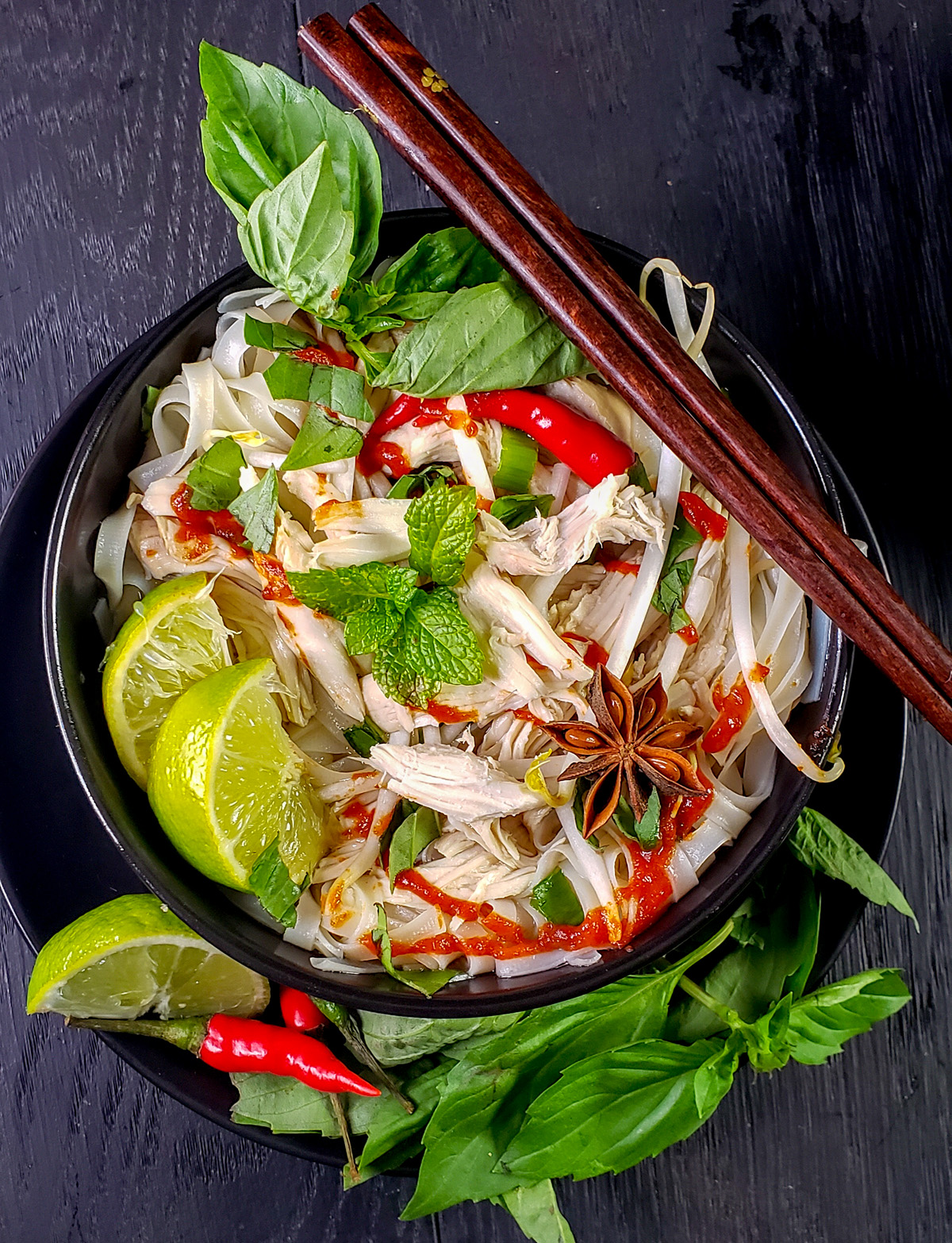 Vietnamese Pho Ga Recipe (Chicken Pho) in the Slow Cooker