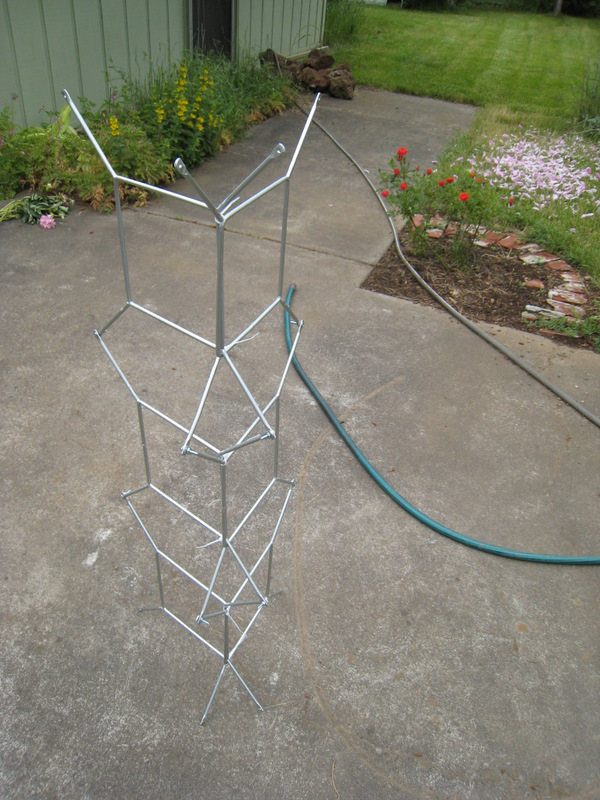 building the ladder trellis