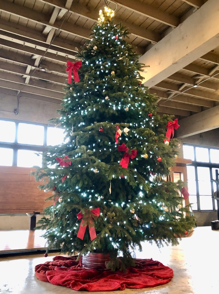 giant christmas tree at Coava