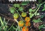Garden tracking spreadsheet