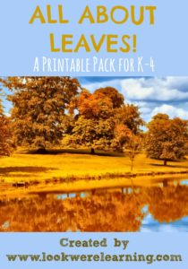 All About Leaves Printable Pack