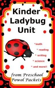 kindergarten ladybug unit from preschool powol Packets