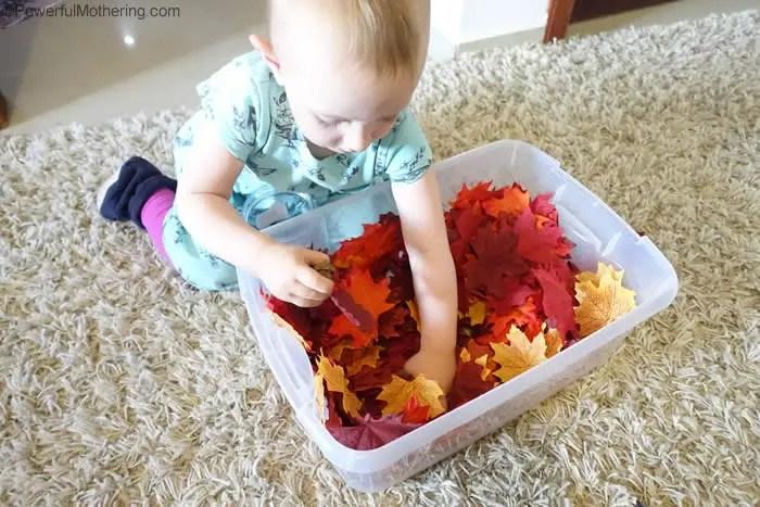 leaf sorting toddler