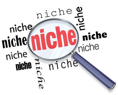marketing A Niche Marketing Strategy A Niche Marketing Strategy niche