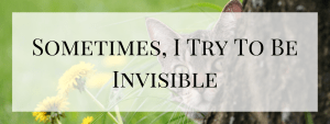 Sometimes, I Try to Be Invisible