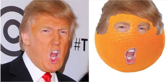 Trump Orange copy