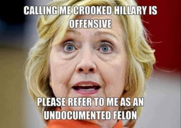 Undocumented Felon copy
