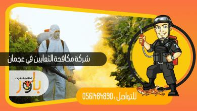شركة مكافحة الثعابين في عجمان