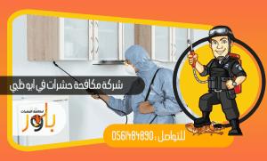 شركة مكافحة حشرات في ابو ظبي