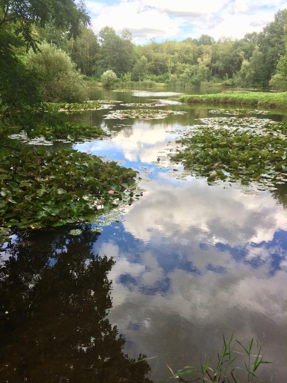 Reflexion des Himmels auf der Oberfläche eines Gewässers  -> Spieglei, Spieglein auf dem Wasser