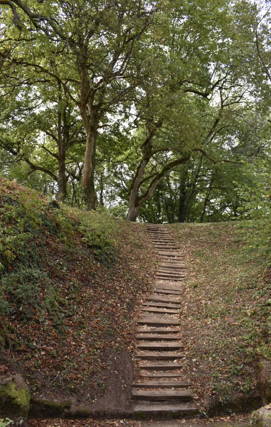 Holztreppe aus dem Burggraben