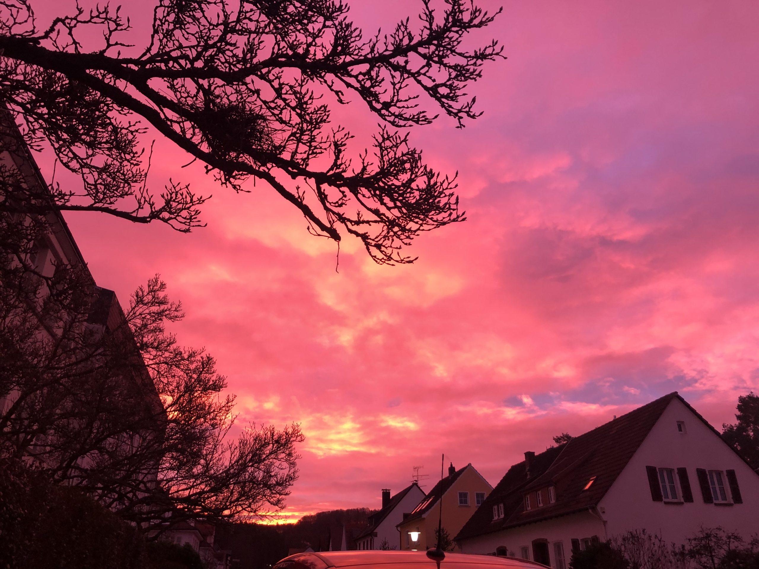 Pink strahlender Himmel vom kräftigen Sonnenaufgang gefärbt