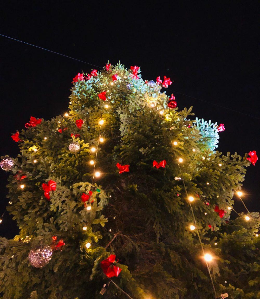 Weihnachtsbaum mit roten Schleifen und Lichterkette