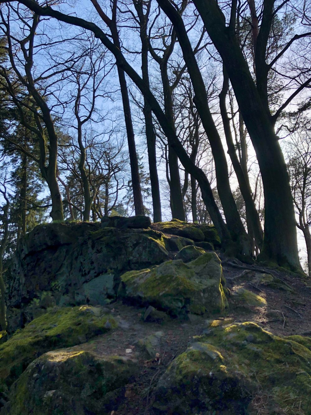 Grünliche Felsen und krumme Bäume unter blauem Himmel