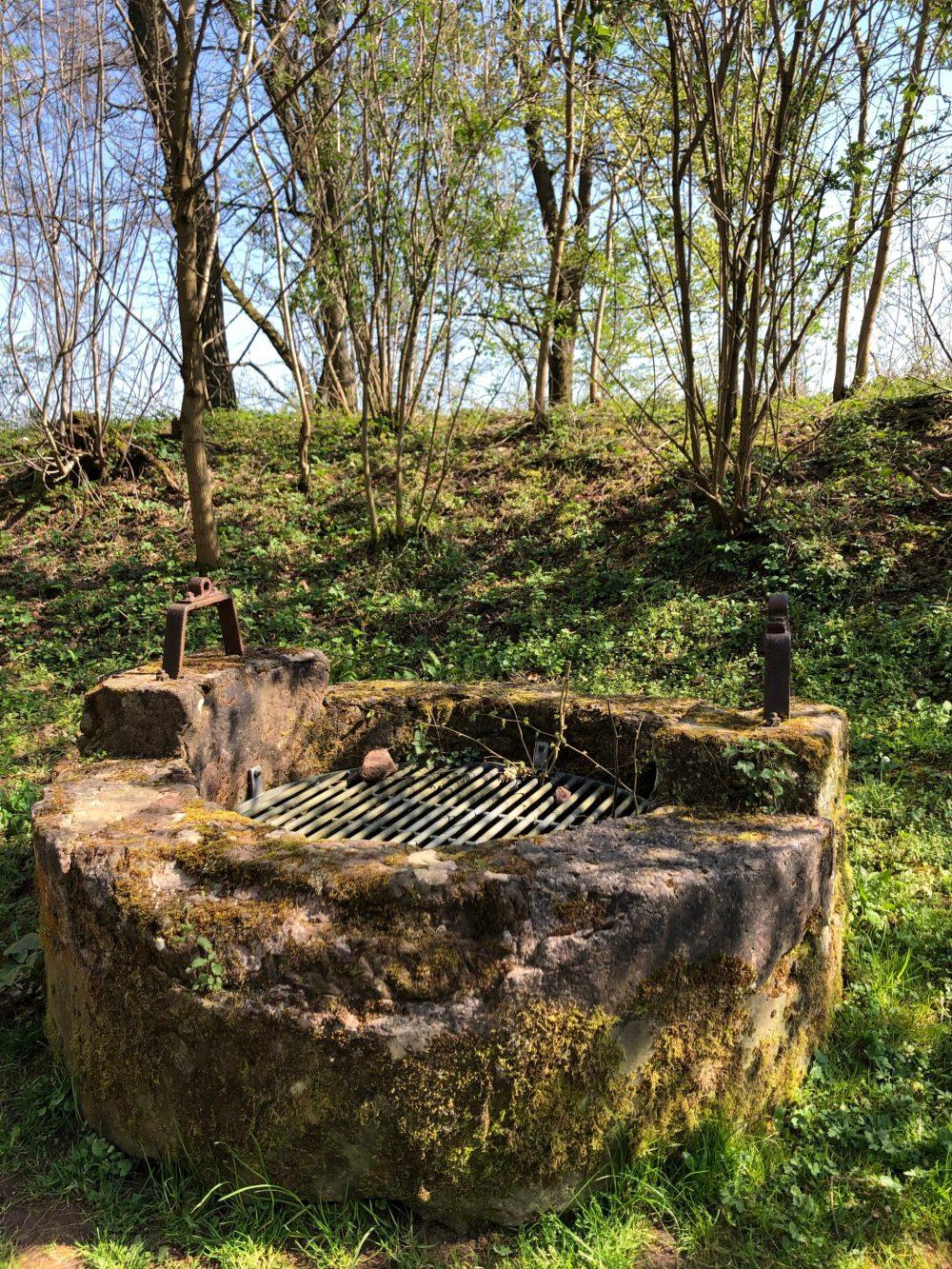 Alter Brunnen im Grünen
