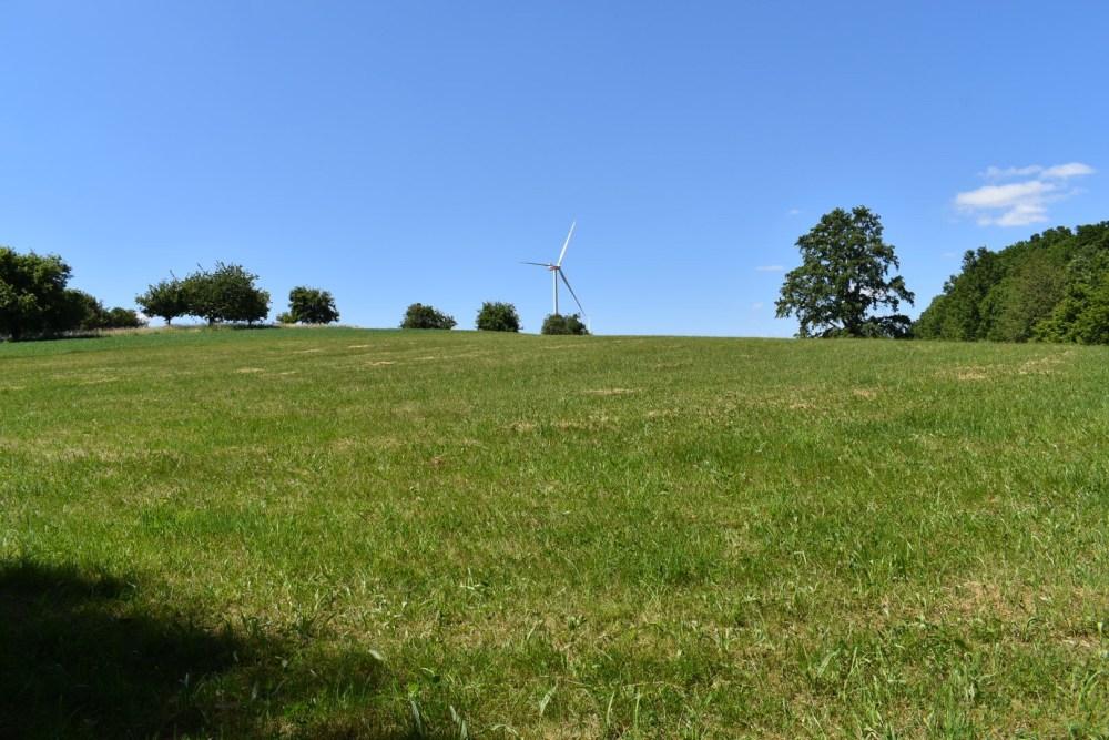 Grüne Wiese mit Windrad im Hintergrund