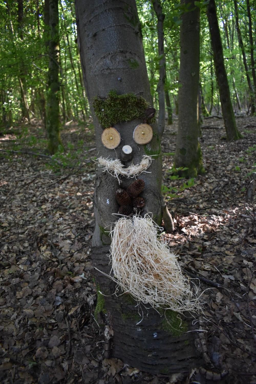 Gesicht mit Bart an einem Baum von der 5-Weiher-Tour