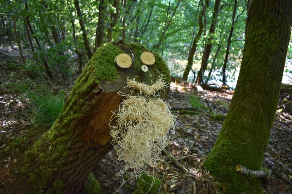 Baumgesicht mit Bart im St. Wendler Wald auf der 5-Weiher-Tour