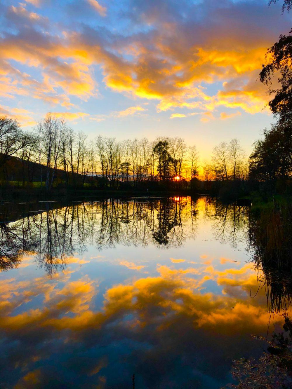 Goldener Sonnenuntergang über dem Weiher