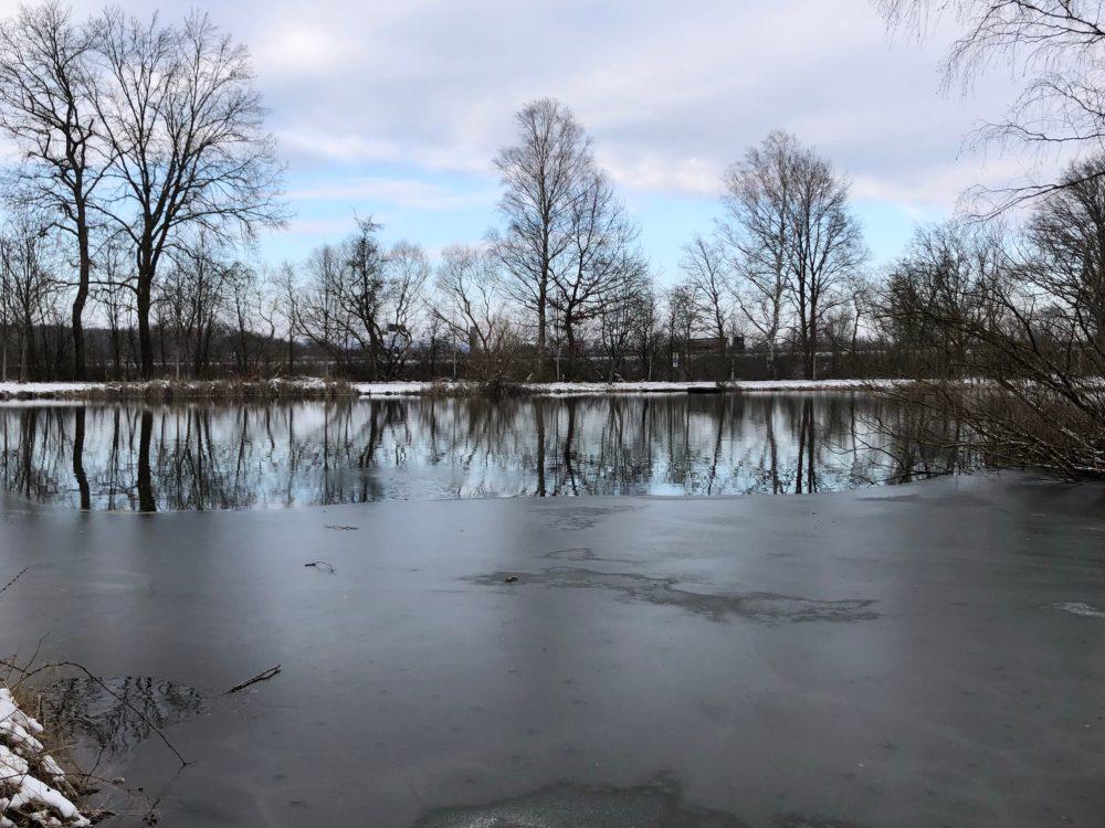 Halbgefrorener Weiher unter grauem Himmel