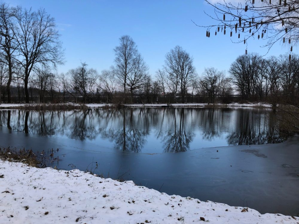 Mit Schnee bedecktes Ufer vor dem Weiher