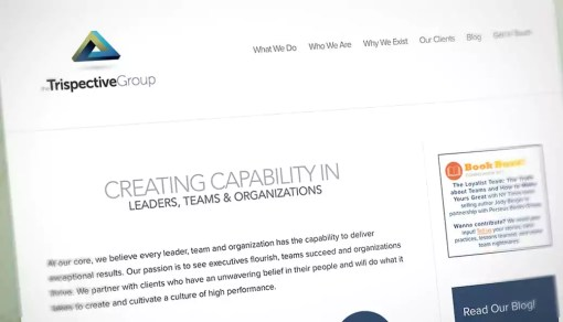 Trispective Group