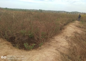 Federal Housing Estate, Airport Road, Lugbe, Federal Capital Territory 901101, ,Land,For Sale,Federal Housing Estate, Airport Road,1009