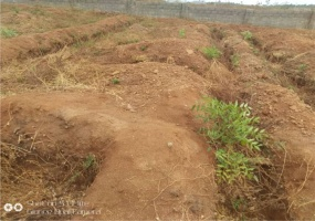 Behind ICPC, Central Area, Federal Capital Territory, ,Land,For Sale,Behind ICPC,1023