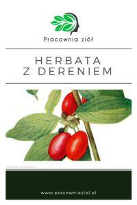 Herbata z dereniem, dereniówka pracownia ziół i zdrowej żywności- sklep z ziołami i herbatami