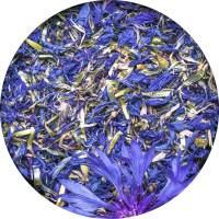 chaber-bławatek-kwiat-pracownia-ziół-i-zdrowej-żywności
