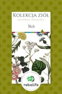 zioła na gorączkę etykiety, mieszanki ziołowe, rebalife Karta produktu Pracownia ziół i zdrowej żywności Rebalife-12