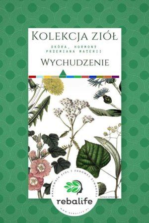 zioła na wychudzenie etykiety, mieszanki ziołowe, rebalife Karta produktu Pracownia ziół i zdrowej żywności Rebalife-38