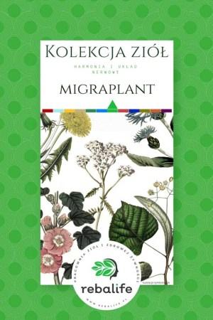 zioła na migrenę etykiety, mieszanki ziołowe, rebalife Karta produktu Pracownia ziół i zdrowej żywności Rebalife-46