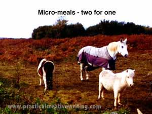 funny picture of three little ponies as micro meals
