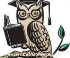 Cartoon owl illustrating an article about creative writing flow
