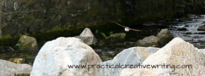 swallow flying over river illustrating a post on Writing Competitions 2017