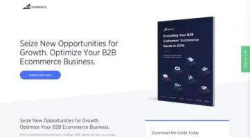Image result for Seize New Opportunities for Growth. Optimize Your B2B Ecommerce Business