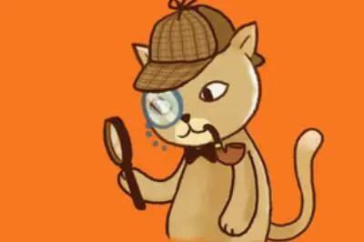 15 Analytics Plugins for WordPress - Practical Ecommerce