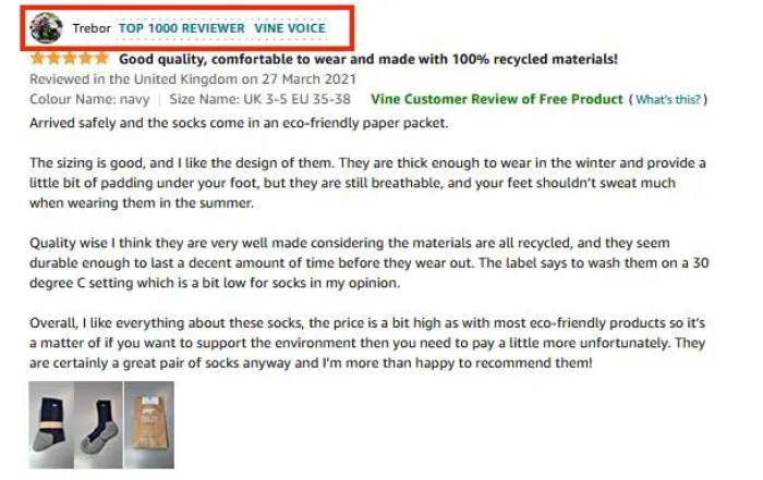 Screenshot of a Vine Voice review on Amazon