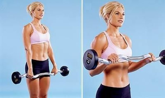 Barbell Biceps Curl workout exercises