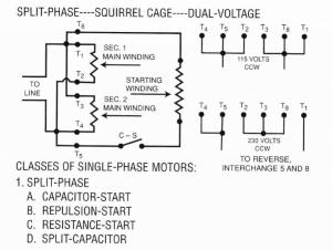 Dual Voltage Motor Wiring Single Phase  impremedia