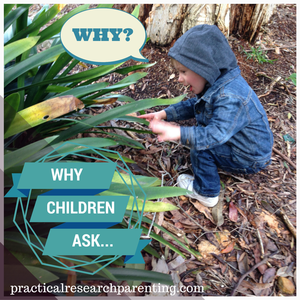 Why Children Ask Why