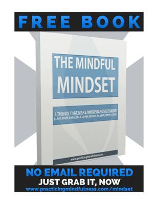 mindfulMindset