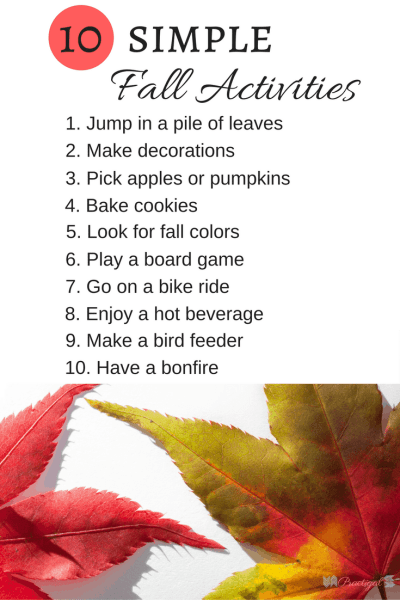 Entertaining your family in the fall doesn't need to cost a fortune. Here are 10 simple fall activities that won't blow your budget. ~Practigal Blog