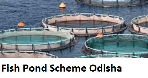 Fish Pond SchemeOdisha