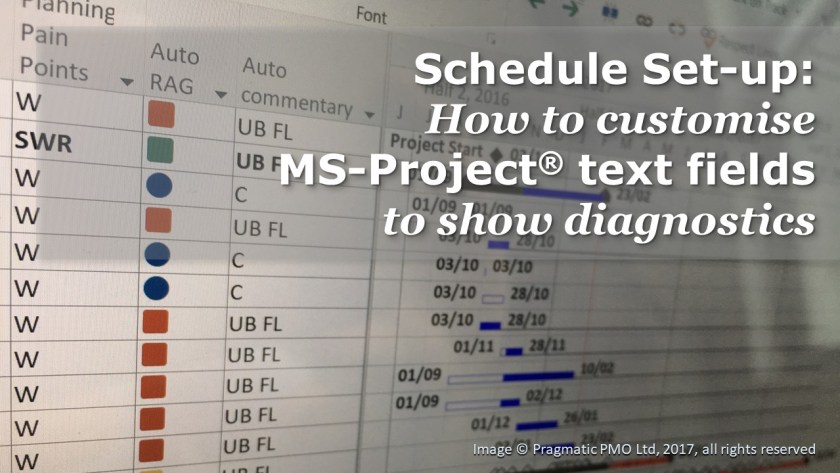 Schedule Setup - How to customise MS-Project text fields to show diagnostics