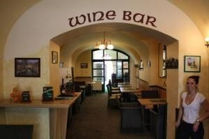 Pension U Lilie Wine bar