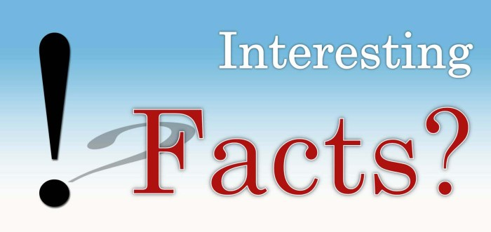 Five Interesting Facts About Personality