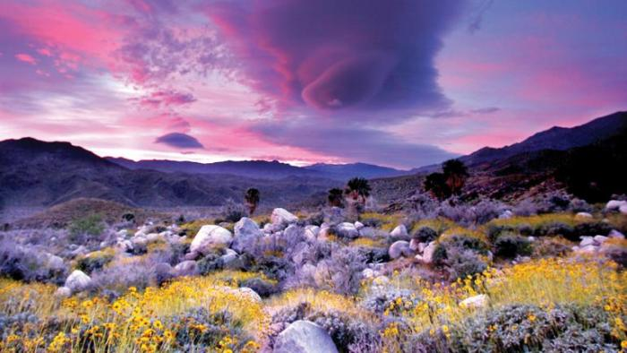 Palm Springs Canyon